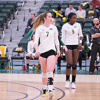 1st year outside hitter Jordin Gudmundson (7) of the Regina Cougars \during the home game on January 6 at Centre for Kinesiology, Health and Sport. Credit: Arthur Ward/Arthur Images