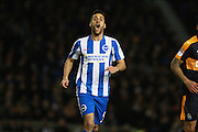 Brighton & Hove Albion centre forward Sam Baldock during the EFL Sky Bet Championship match between Brighton and Hove Albion and Newcastle United at the American Express Community Stadium, Brighton and Hove, England on 28 February 2017. Photo by Bennett Dean.