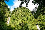 Les majestueuses chutes Trafalgar de l'&icirc;le de la Dominique.<br /> <br /> The majestic Trafalgar falls in Dominica.
