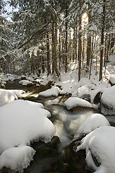 Fresh snow covers the rocks in Wonalancet Brook in New Hampshire's White Mountain National Forest.  Wonlanacet, NH.