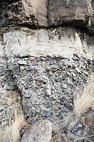 Sedimentary rock layers on cliff band in central Oregon USA.