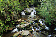 Small waterfall at Watersmeet, near Lynton in North Devon