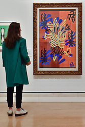 "© Licensed to London News Pictures. 01/08/2017. London, UK. A visitor views ""Mimosa"", 1949-51.  Preview of ""Matisse in the Studio"", at the Royal Academy of Arts, Piccadilly, the first exhibition to consider how the personal collection of treasured objects of Henri Matisse were both subject matter and inspiration for his work.  Around 35 objects are displayed alongside 65 of Matisse's paintings, sculptures, drawings, prints and cut-outs.  The exhibition runs 5 August to 12 November 2017.  Photo credit : Stephen Chung/LNP"