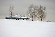 120111-South Jefferson County, COLORADO-wildartsnow-Thursday, Dec. 1, 2011 at Robert F. Clement Park..Photo By Matthew Jonas/Evergreen Newspapers/Photo Editor