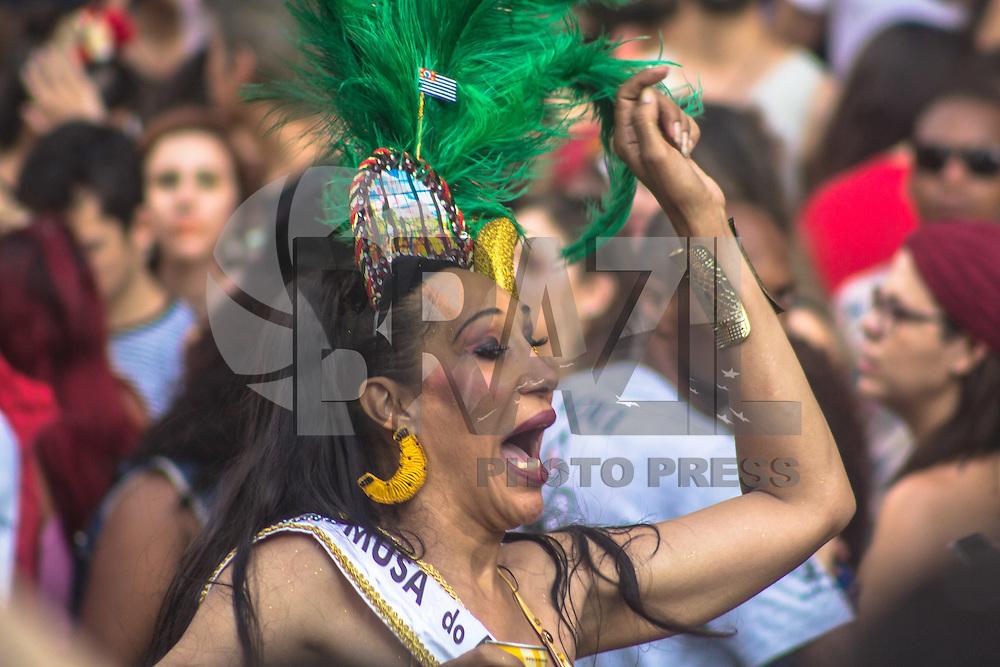 SÃO PAULO, SP, 19.02.2017 - CARNAVAL-SP - Foliões durante desfile do bloco Acadêmicos do Baixo Augusta na rua da Consolação na Centro de São Paulo neste domingo, 19. (Foto: Danilo Fernandes/Brazil Photo Press)