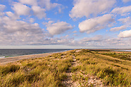 Hampton Bays Z