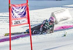 28.12.2013, Hochstein, Lienz, AUT, FIS Weltcup Ski Alpin, Lienz, Riesentorlauf, Damen, 1. Durchgang, im Bild Megan McJames (USA) // during the 1st run of ladies giant slalom Lienz FIS Ski Alpine World Cup at Hochstein in Lienz, Austria on 2013-12-28, EXPA Pictures © 2013 PhotoCredit: EXPA/ Michael Gruber