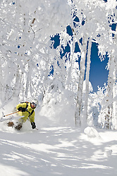 Skier: Dave Bott<br /> Location: North East Kingdom, Vermont