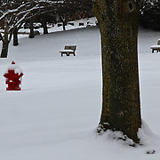 &quot;Seeing Red&quot;<br />