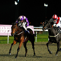 Crystal Peaks and D Swift winning the 7.35 race