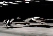 Greyhounds racing at Ayr dog track in Scotland