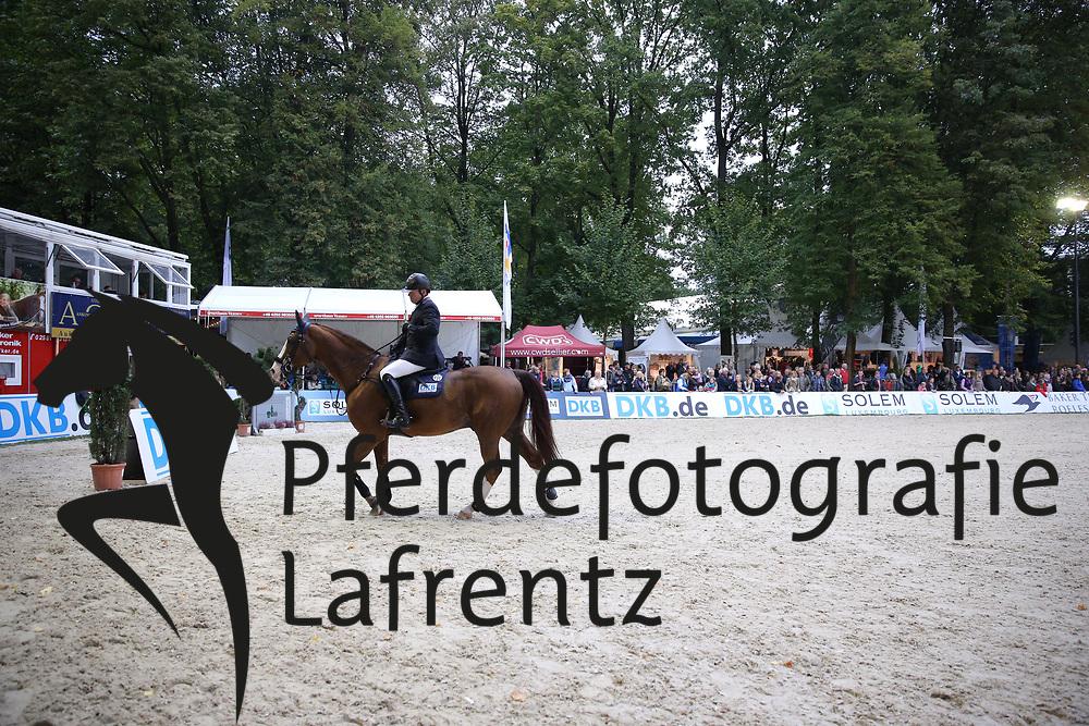 Nieberg, Lars, Galippo<br /> Paderborn - Paderborn Challenge 2014<br /> Championat<br /> © www.sportfotos-lafrentz.de/ Stefan Lafrentz