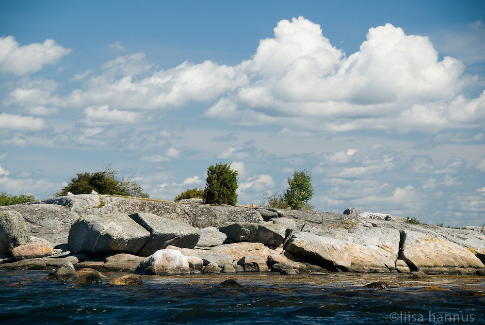 A few small trees and bits of foliage manage to eke out an existence on this rocky islet that is part of Sweden's southernmost archipelago in the Baltic Sea, near Karlskrona.