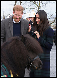 February 13, 2018 - Edinburgh, United Kingdom - Image licensed to i-Images Picture Agency. 13/02/2018. Edinburgh,Scotland,United Kingdom. Prince Harry and Meghan Markle meet Cruachan IV, the regimental mascot of the Royal Regiment of Scotland during their visit to Edinburgh Castle. (Credit Image: © Stephen Lock/i-Images via ZUMA Press)