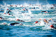 WELLINGTON, NEW ZEALAND - January 25:  State Capital Classic, Wellington, January 25th 2015 http://www.oceanswim.co.nz Wellington, New Zealand.  State Capital Classic, Wellington, January 25th 2015 http://www.oceanswim.co.nz.  (Photo by Mark Tantrum/ mark tantrum.com)