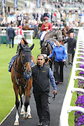 Horses in the Parade Ring at the York Dante Meeting at York Racecourse, York, United Kingdom on 16 May 2018. Picture by Mick Atkins.