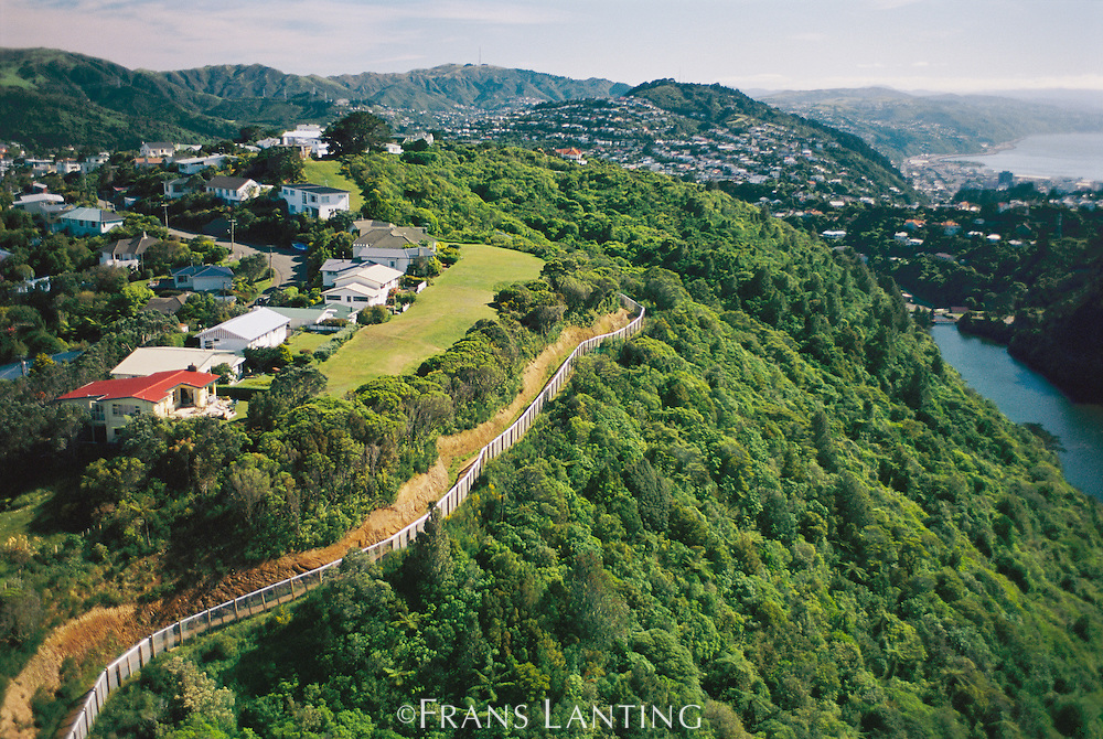 Perimeter fence of Karori Wildlife Sanctuary keeps out non-native animals (aerial), Wellington, New Zealand