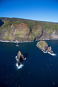 Paokalani Island, North Kohala Coast, Big Island of Hawaii