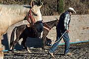 A Mexican cowboy leads his horse as he breaks camp on Cubilete Mountain at the start of the final day during the annual Cabalgata de Cristo Rey pilgrimage January 6, 2017 in Guanajuato, Mexico. Thousands of Mexican cowboys and horse take part in the three-day ride to the mountaintop shrine of Cristo Rey.