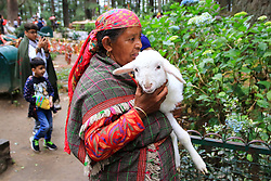 July 6, 2018 - Manali, Himachal Pradesh, India - A woman with her lamb waiting for tourists in Manali town, Himachal Pradesh , India on 6th July,2018.Manali is a resort town nestled in the mountains of the Indian state of Himachal Pradesh near the northern end of the Kullu Valley, at an altitude of 2,050 m (6,726 ft) in the Beas River Valley.(Photo By Vishal Bhatnagar/NurPhoto) (Credit Image: © Vishal Bhatnagar/NurPhoto via ZUMA Press)