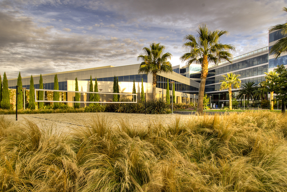 Landscape design elements on the Marvell campus