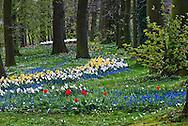 Spring flowers bloom in the gardens of Groot-Bijgaarden Castle.