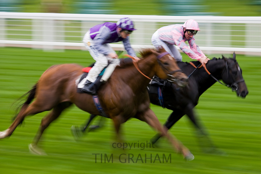 Horseracing at Ascot Racecourse, Berkshire, England, United Kingdom
