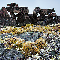 Canada, Nunavut Territory, Vansittart Island, Moss grows on arctic tundra beneath Inuit stone tent ring along Hudson Bay near Arctic Circle