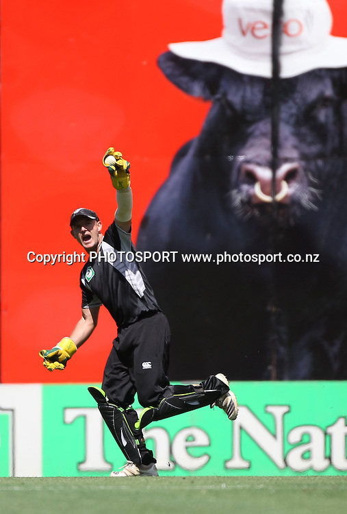 New Zealand Gareth Hopkins appeals for a catch.<br />