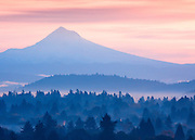 Backlit morning valley mist with Mount Hood 3,426m (11,239ft) beyond, viewed from Mount Tabor Park in Portland.  The left skyline is Cathedral Ridge, and the right skyline is the Southeast Ridge.  The bulge in the Southeast Ridge is called the Steel Cliff.  Mount Hood is a stratovolcano in the Cascade Volcanic Arc of Northern Oregon.  The mountain's twelve glaciers are thinning as a result of glacial retreat attributed to Global Warming associated with world climate change.