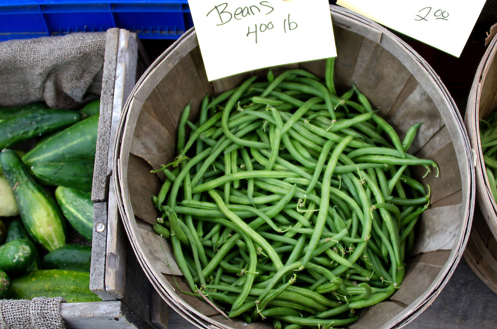 Bushel basket of green beans at the Common Ground Fair farmers market, Unity Maine.