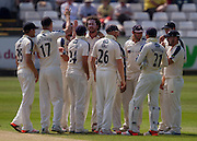 Ryan J Sidebottom (Yorkshire CCC) celebrates with team mates after taking the crunch wicket of Mark Stoneman  (Durham County Cricket Club) in the second innings  during the LV County Championship Div 1 match between Durham County Cricket Club and Yorkshire County Cricket Club at the Emirates Durham ICG Ground, Chester-le-Street, United Kingdom on 1 July 2015. Photo by George Ledger.