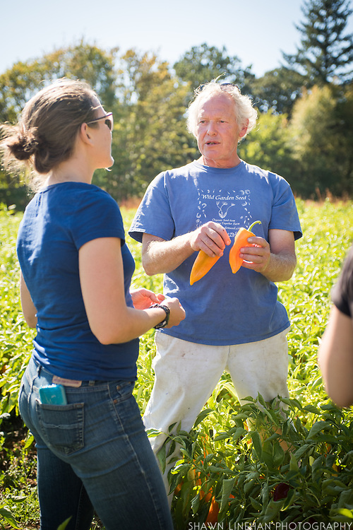 Frank Morton discusses his line of peppers with Claire Luby at his Wild Garden Seed Farm in Philomath, OR.