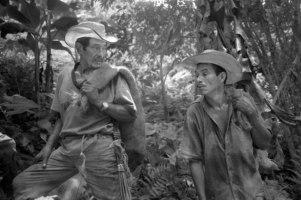 Two campesinos from the Peace Community of San José de Apartadó return to their land to collect crops. Their trips to their outlying hamlets are made with international accompaniment as the community has been targeted numerous times by the Army & paramilitary groups, and also guerrillas of the FARC.