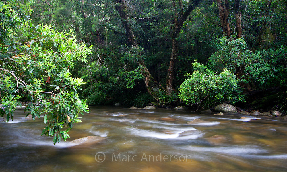 A flowing river in Barrington Tops National Park, Australia