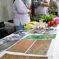 Toluca, México.- El cuarto Eco Festival se llevó a cabo en el Parque Alameda 2000, en el cual presentaron conferencias, talleres y exposiciones con una temática enfocada en las principales problemáticas de los jóvenes como adicciones, sexualidad responsable, violencia, cultura emprendedora,culturas urbanas entre otros. Agencia MVT / Arturo Hernández S.