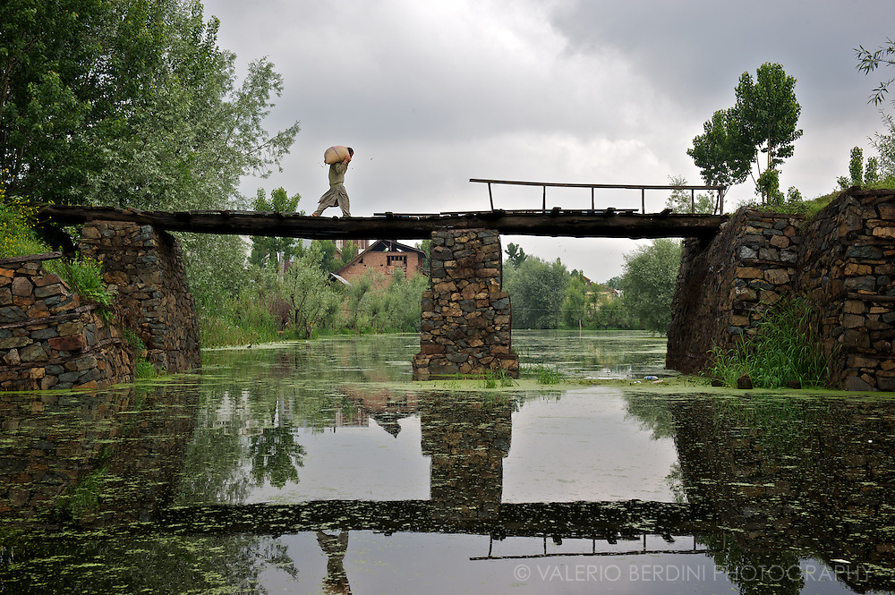 A man crosses a pedestrian bridge over one of the canals in the backwaters next to Dal Lake. Kashmir. India