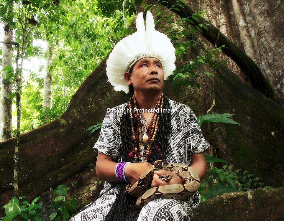 Le boa blanc, animal le plus sacré dans dans la spiritualité du peuple Huni Kuin