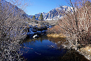 Convict Lake During Winter