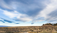 Geese fly high above Frenchmans Coulee near Vantage, Washington, USA.