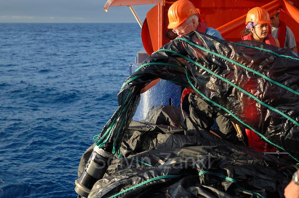 Die einzelnen Fangbehälter am Ende des MOCNESS-Fangnetzes werden nach dem Hieven so schnell wie möglich in Eimer mit 4 Grad kaltem Wasser gestellt. Eile ist geboten, da der für die Wissenschaft kostbare Inhalt bei den an Bord herrschenden Temperaturen von bis zu über 30 Grad schnell unbrauchbar werden kann.