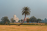 Kids playing in open fields near Taj Mahal in Agra, Uttar Pradesh.