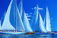 Yacht Race, Sag Harbor, Shelter Island, New York, USA
