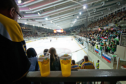View on the ice rink and beer during ice-hockey match between UPC Vienna Capitals and HDD Tilia Olimpija in 17th Round of EBEL league, on October 30, 2011 at Albert Schultz Eishalle, Wien, Austria. (Photo By Matic Klansek Velej / Sportida)