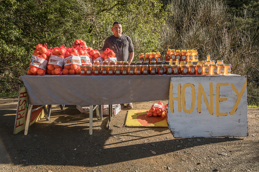"""I've been doing this for three years...business is good.""  -Clear Lake resident Juan Hernandez mans his fruit and honey stand near the corners of Petrified Forest and Porter Creek Roads."