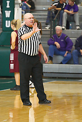 26 January 2013: Tremont lady Turks v El Paso - Gridley Lady Titans in Championship game, Final Round McLean County Tournament at Shirk Center in Bloomington Illinois