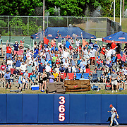 Mississippi students celebrate a home run by Sikes Orvis during the fifth inning of an NCAA college baseball game against Arkansas in Oxford, Miss., Saturday, May 3, 2014. (Photo/Thomas Graning)