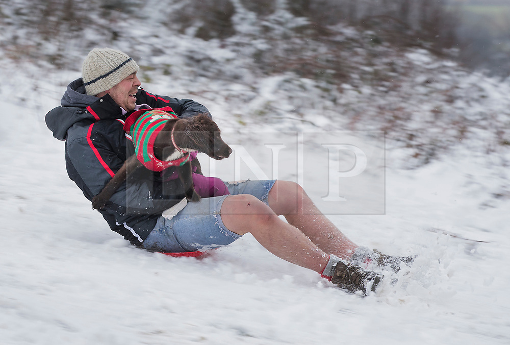 © Licensed to London News Pictures. 27/12/2017. Dorking, UK. Lee Maidens slides down a snowy Leith Hill with his dog Eddie after early morning snow showers and low temperatures. Photo credit: Peter Macdiarmid/LNP