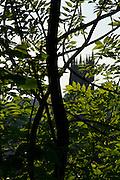 La cathédrale Saint Nicolas - le symbole visible de la Ville de Fribourg. La légende prétend que, si son clocher de 74m n'est pas achevé, c'est parce que l'on manqua d'argent. Joyau du gothique, la cathédrale fut construite entre 1283 et 1490. Die Kathedrale St. Nikolaus ist das weitherum sichtbare Wahrzeichen der Stadt. Sie wurde ab 1283 in mehreren Etappen bis 1490 an der Stelle eines romanischen Gotteshauses erbaut und besitzt einen 76 Meter hohen Turm, dessen Bau 1490 im Stil der späten Flamboyantgotik abgeschlossen. © Romano P. Riedo The gothic cathedral of st nicolas in Fribourg Switzerland The gothic cathedral of st nicolas in Fribourg Switzerland