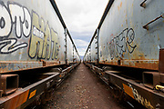 Abandoned and graffitied train at the old train station in Flanigan, Nevada.